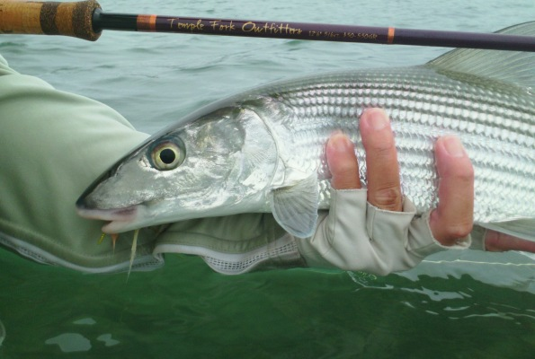 Nervous Waters Fly Fishers in Hawaii have been making good use of the DC series of spey rods for bonefish. Photo courtesy Nervous Waters Fly Fishers.