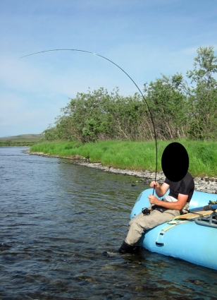 Here, an angler puts far to much pressure on the tip of the rod. This not only increases failure rate, but always puts unnecessary pressure on the angler.